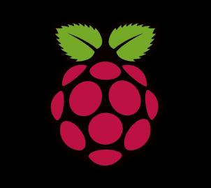 rasp-logo